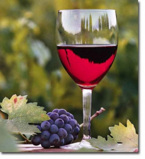 Health Food Contest: Wine or Concord Grapes?